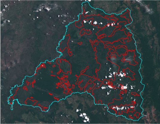 211,290 hectares (2,110 km2) burned in 2020.