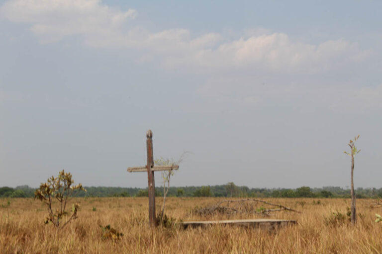Even the communities' cemeteries have been cleared for soybeans.