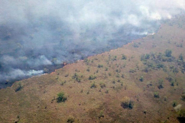 Fire strikes Bananal Island, Tocantins in 2020.