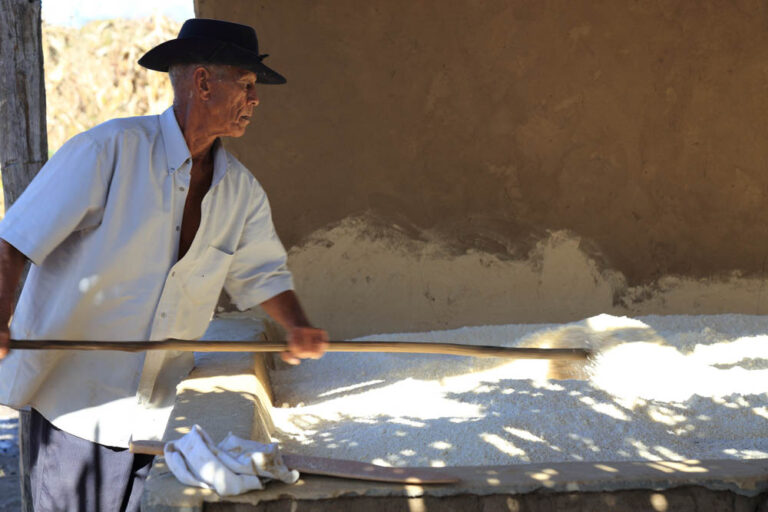 Mr. Manuel Mocó's flour mill