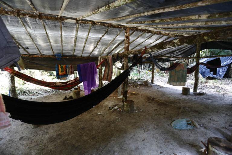 : Acampamento de trabalhadores para extração de madeira